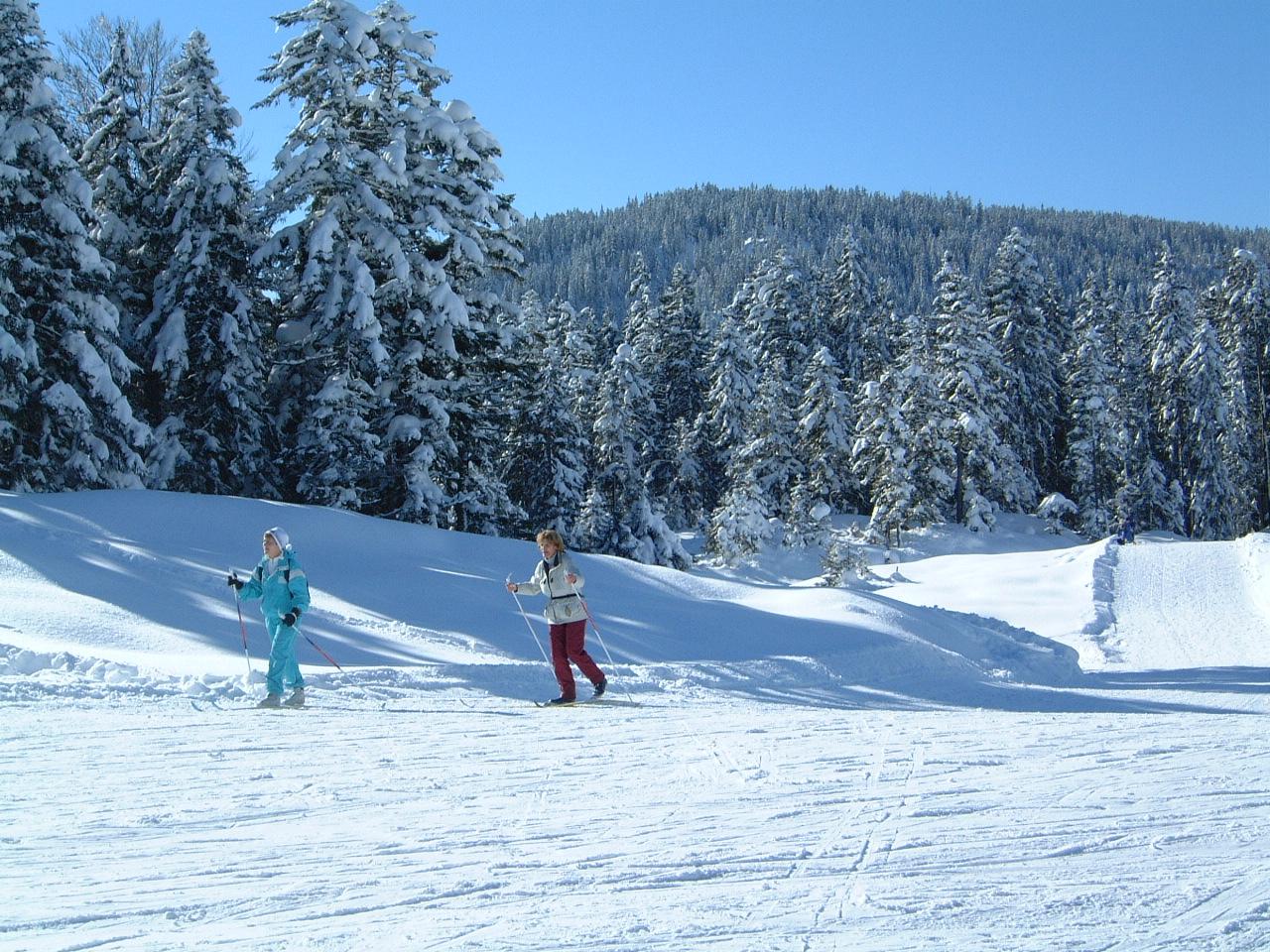 Neuleutasch-Winter-3